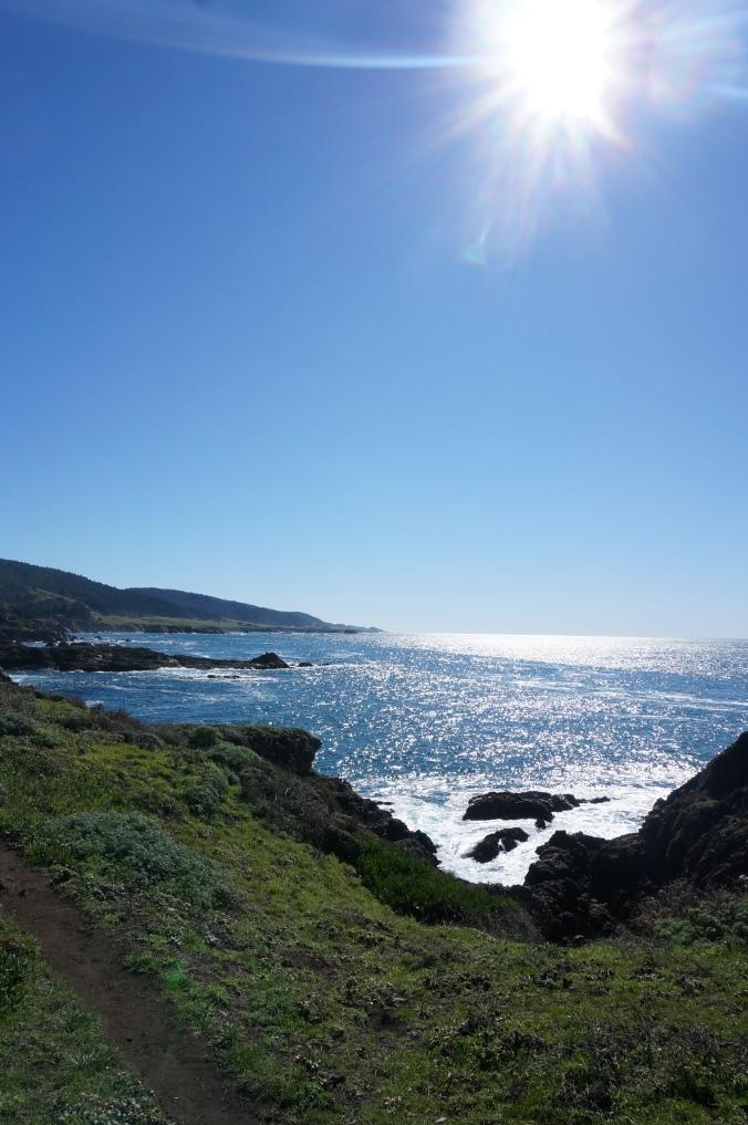 sunny sea ranch